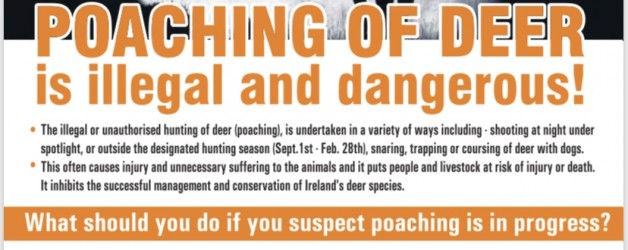 Campaign Targets the illegal Killing of Wild Deer