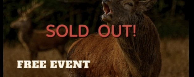 Red Deer Rut Watch Event, Killarney National Park (SOLD OUT!)